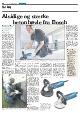 Artikel, Alsige og stærke betonhøvle fra Bosch